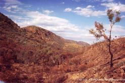 Ellery Creek Big-Hole, MacDonnell Ranges