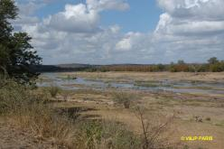 Kruger: Olifants River