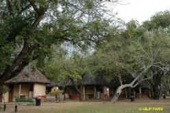 Kruger: Skukuza Rest Camp