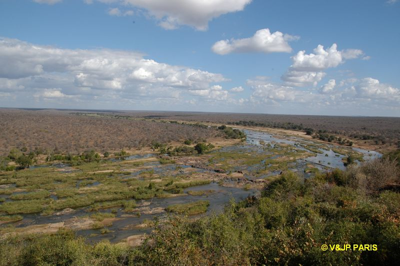 Kruger : Olifants River