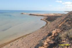 Shark Bay Eagle Bluff