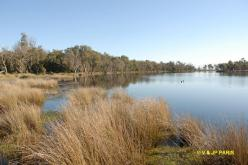 Ludlow State Forest, Busselton